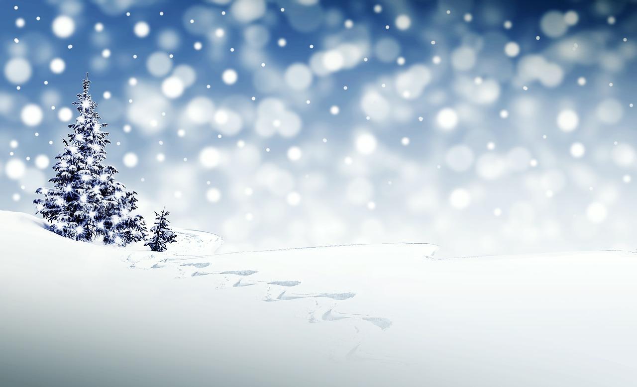 神鍋高原に雪が来ました